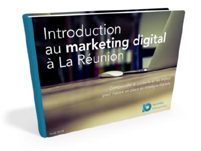 guide marketing digital reunion