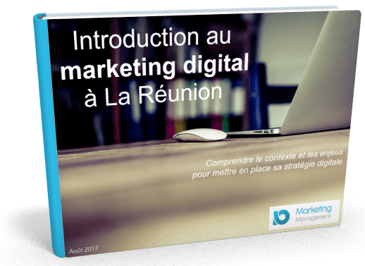Guide du marketing digital à La Réunion